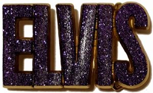 Elvis Letters Purple Glitter on Solid Brass Belt Buckle + display stand. Product code. FA1